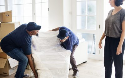 Why Mover Melbourne is the best Removalists in Melbourne