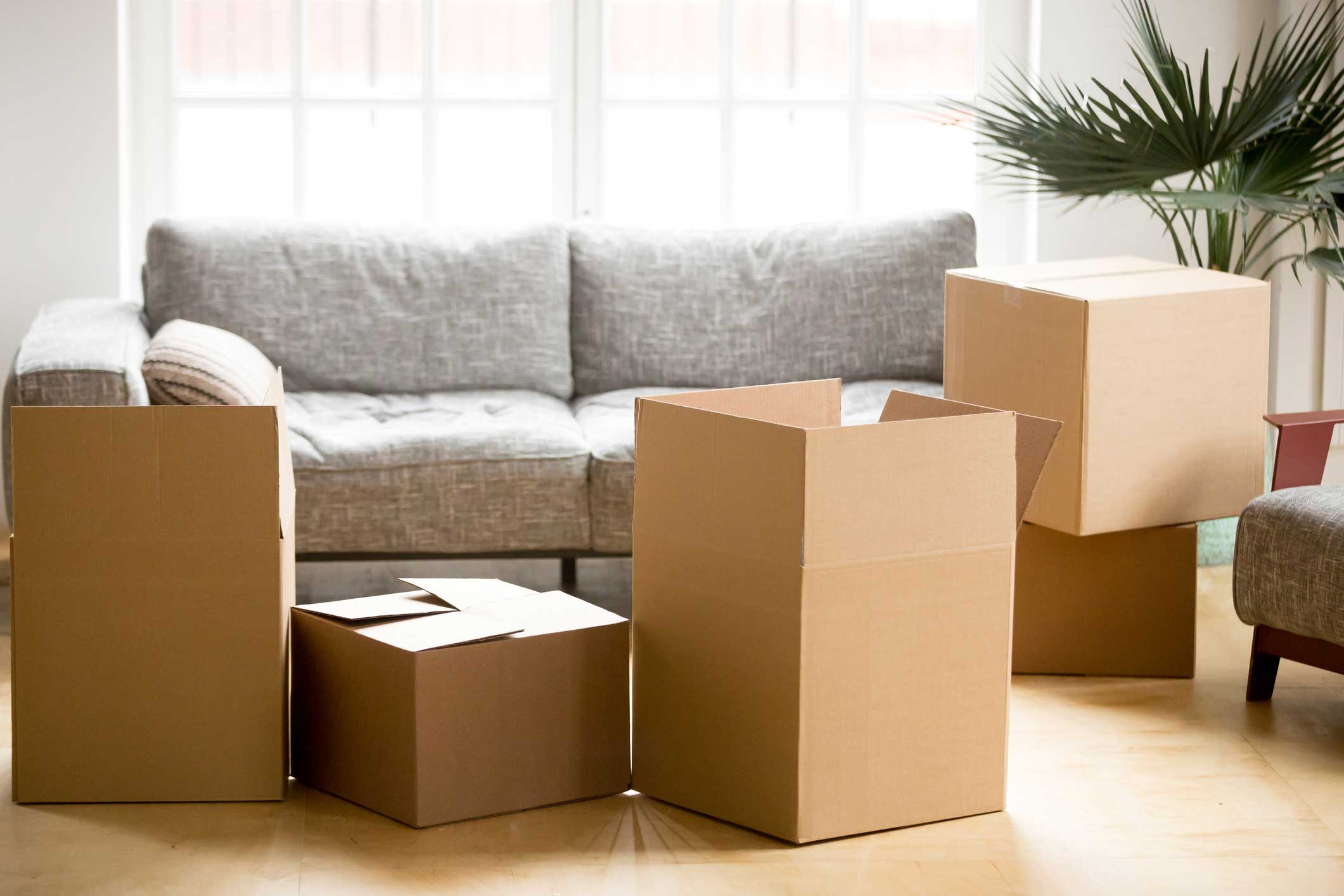 Small Removal Services In Dixons Creek